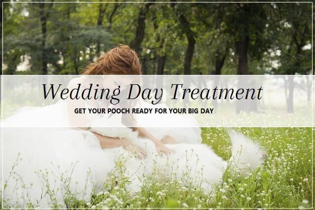 Wedding day spa treatment