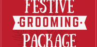 festive-grooming-package-web