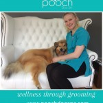 Post treatment cuddles at pooch Dog Spa